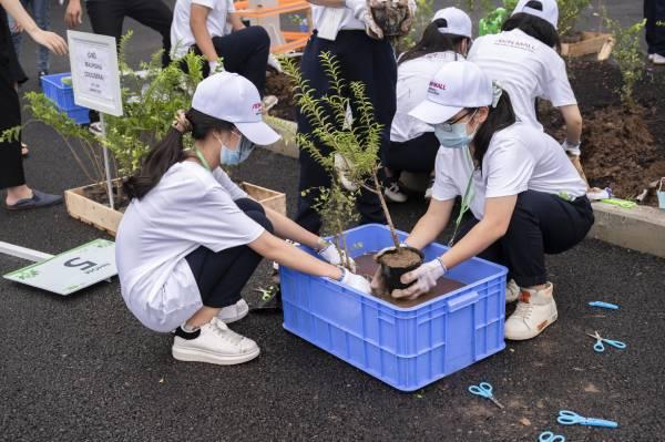 Các em học sinh chăm chú trồng cây
